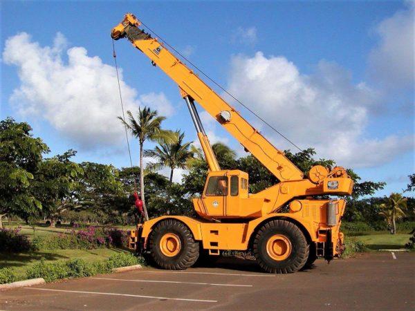 Kauai Cranes